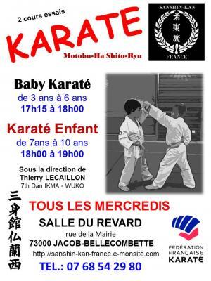 Affiches karate 2018 2019